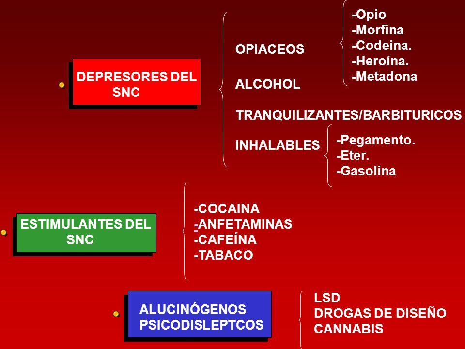 -Opio-Morfina. -Codeina. -Heroína. -Metadona. OPIACEOS. DEPRESORES DEL. SNC. ALCOHOL. TRANQUILIZANTES/BARBITURICOS.