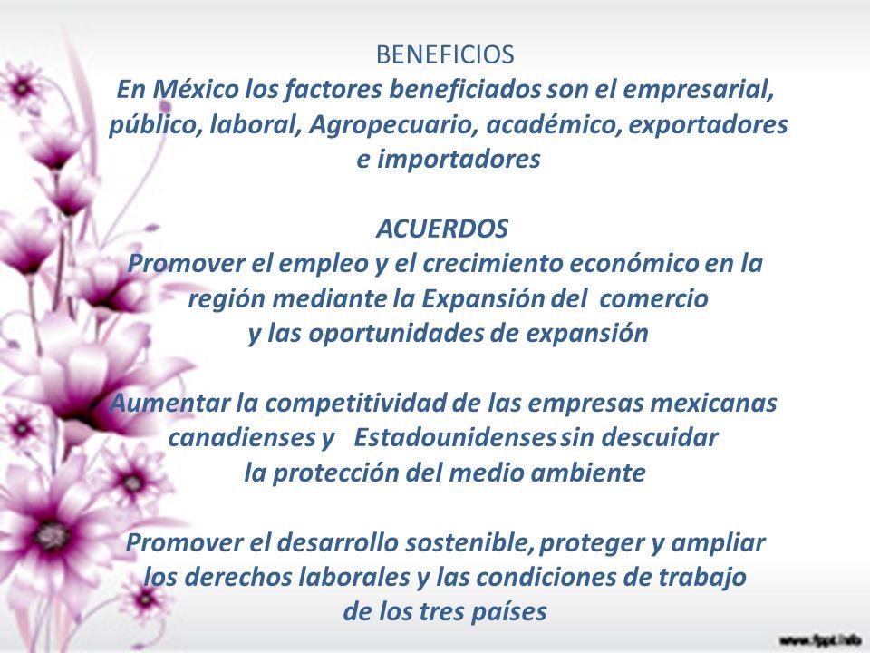 En México los factores beneficiados son el empresarial,