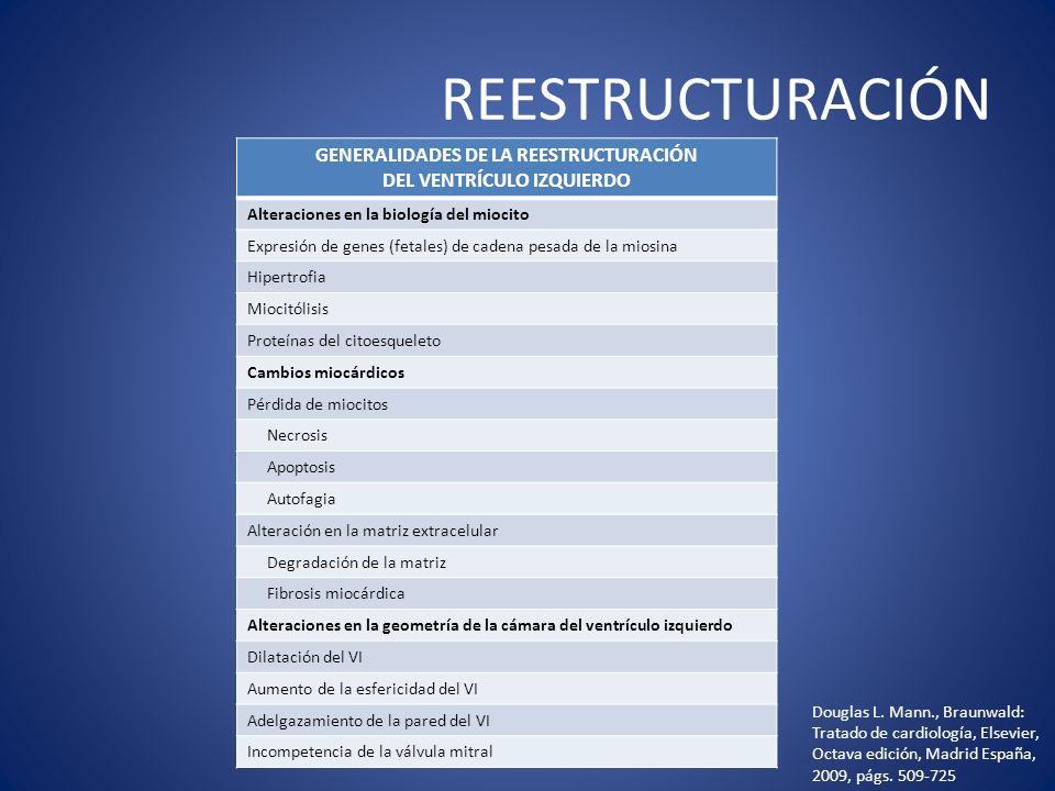 GENERALIDADES DE LA REESTRUCTURACIÓN DEL VENTRÍCULO IZQUIERDO