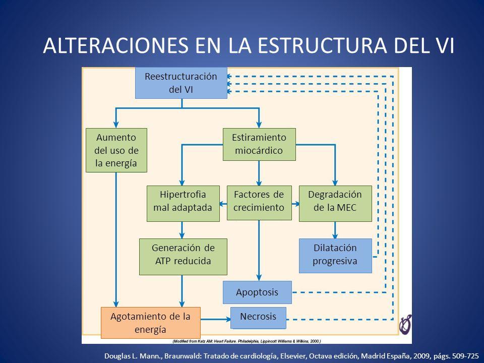 ALTERACIONES EN LA ESTRUCTURA DEL VI