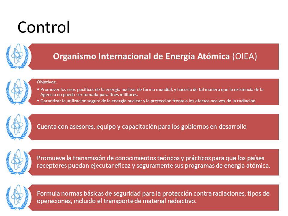 Organismo Internacional de Energía Atómica (OIEA)