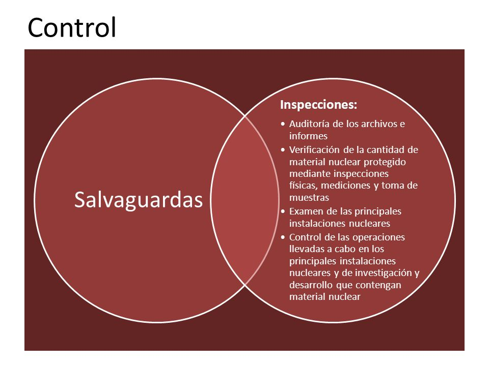 Control Salvaguardas Inspecciones: