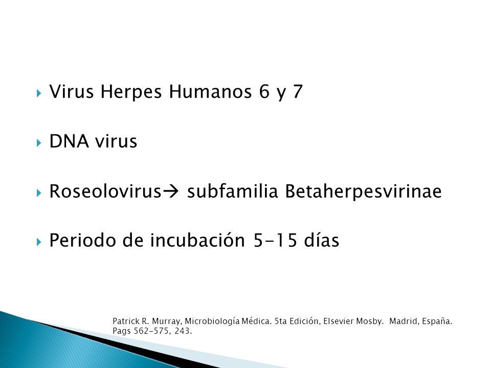 Roseolovirus subfamilia Betaherpesvirinae