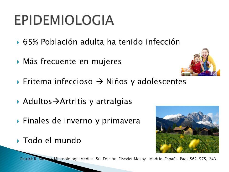 EPIDEMIOLOGIA 65% Población adulta ha tenido infección