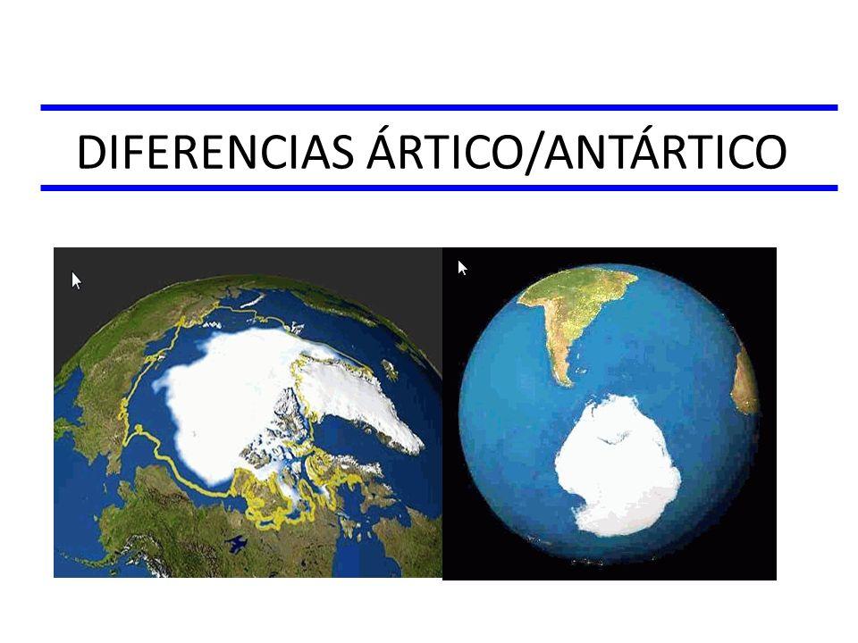 DIFERENCIAS ÁRTICO/ANTÁRTICO