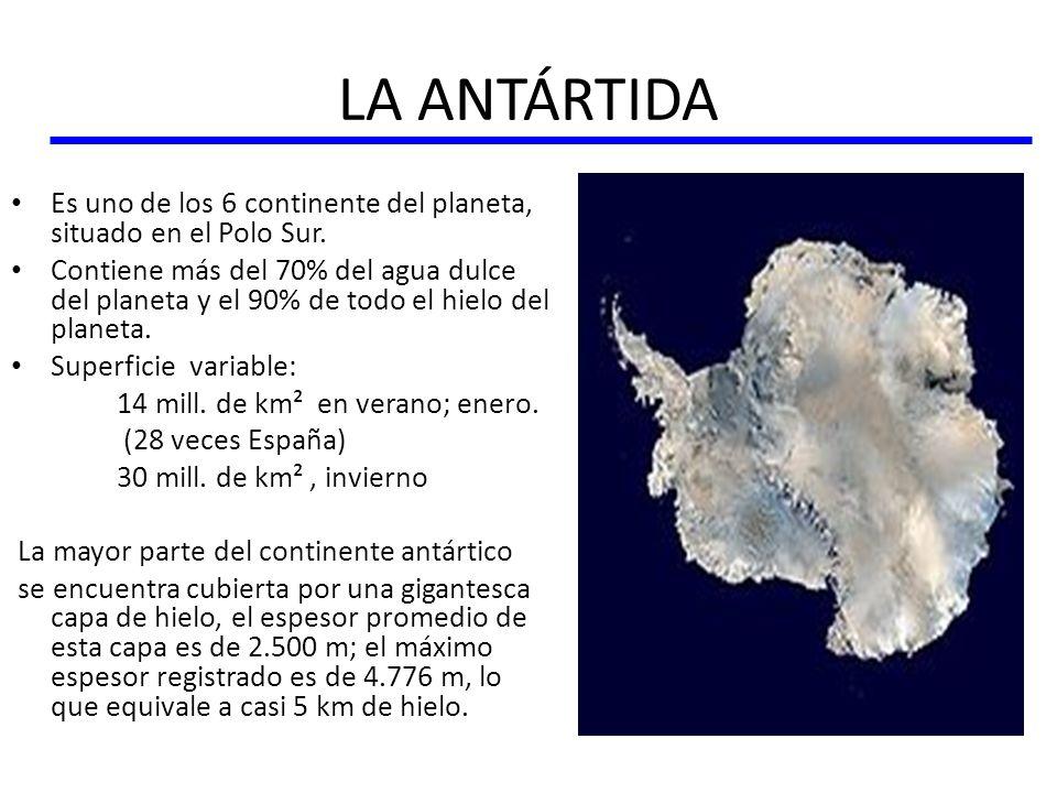 LA ANTÁRTIDA Es uno de los 6 continente del planeta, situado en el Polo Sur.