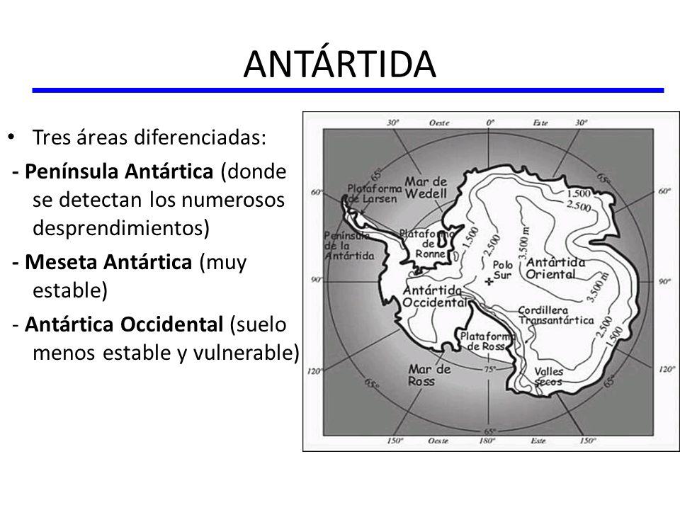 ANTÁRTIDA Tres áreas diferenciadas: