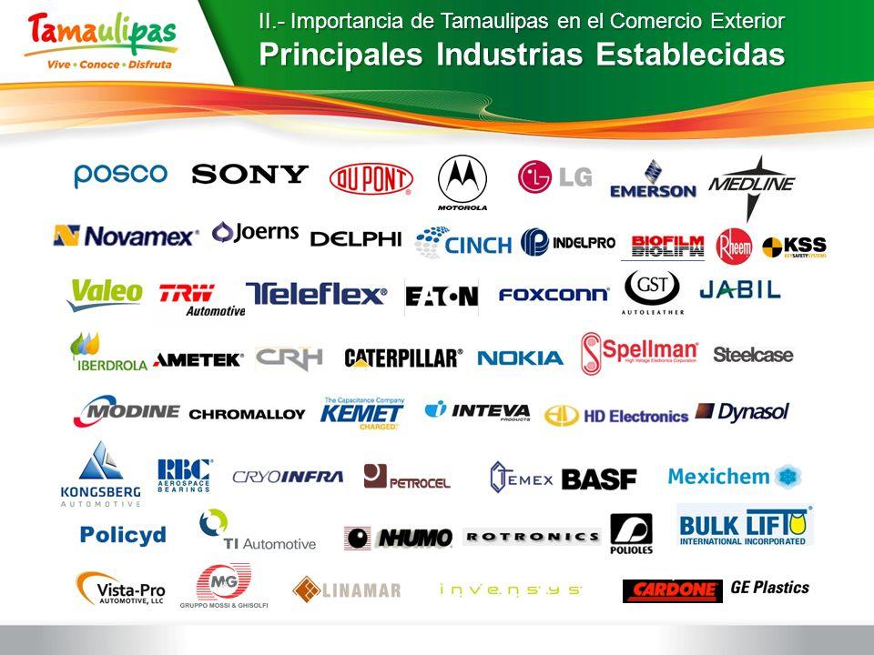 Principales Industrias Establecidas