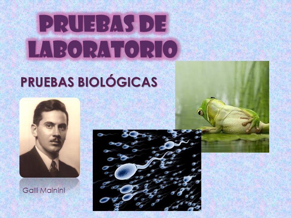 PRUEBAS DE LABORATORIO PRUEBAS BIOLÓGICAS Galli Mainini