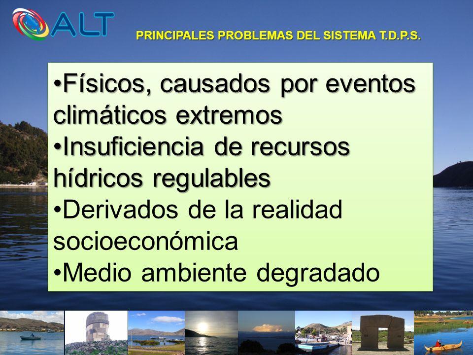 PRINCIPALES PROBLEMAS DEL SISTEMA T.D.P.S.