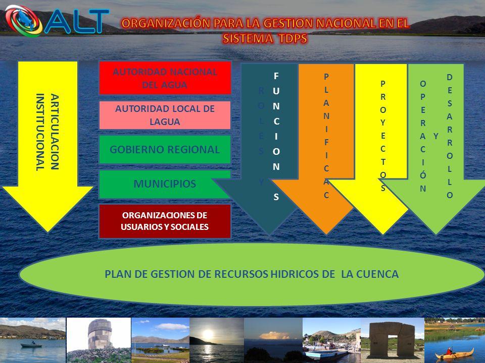ORGANIZACIÓN PARA LA GESTION NACIONAL EN EL SISTEMA TDPS