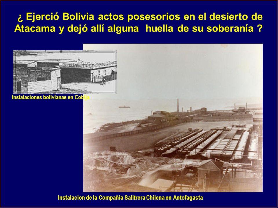 ¿ Ejerció Bolivia actos posesorios en el desierto de
