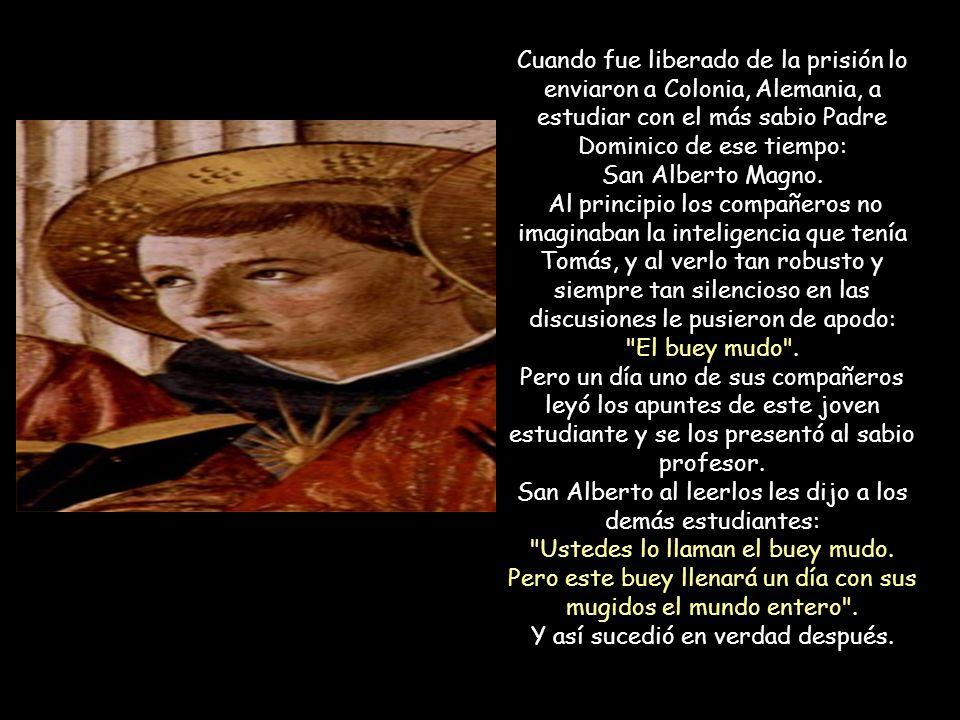 San Alberto al leerlos les dijo a los demás estudiantes: