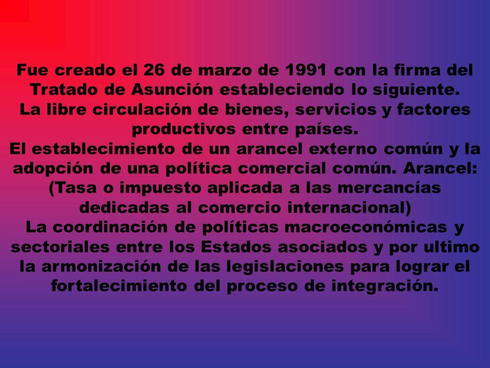 Fue creado el 26 de marzo de 1991 con la firma del Tratado de Asunción estableciendo lo siguiente.