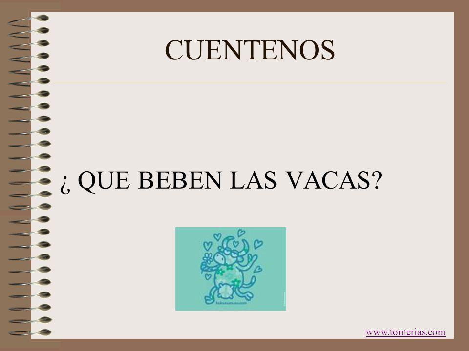 CUENTENOS ¿ QUE BEBEN LAS VACAS www.tonterias.com