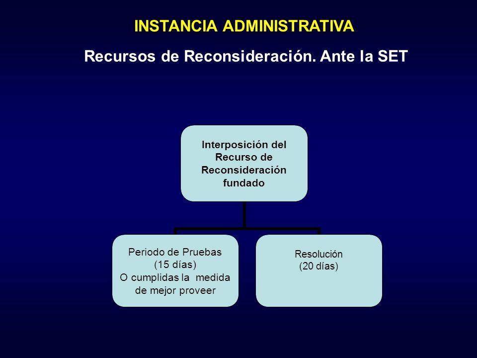 INSTANCIA ADMINISTRATIVA Recursos de Reconsideración. Ante la SET