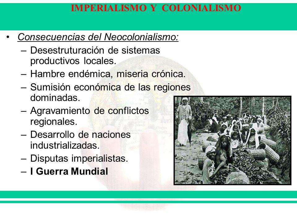 Consecuencias del Neocolonialismo: