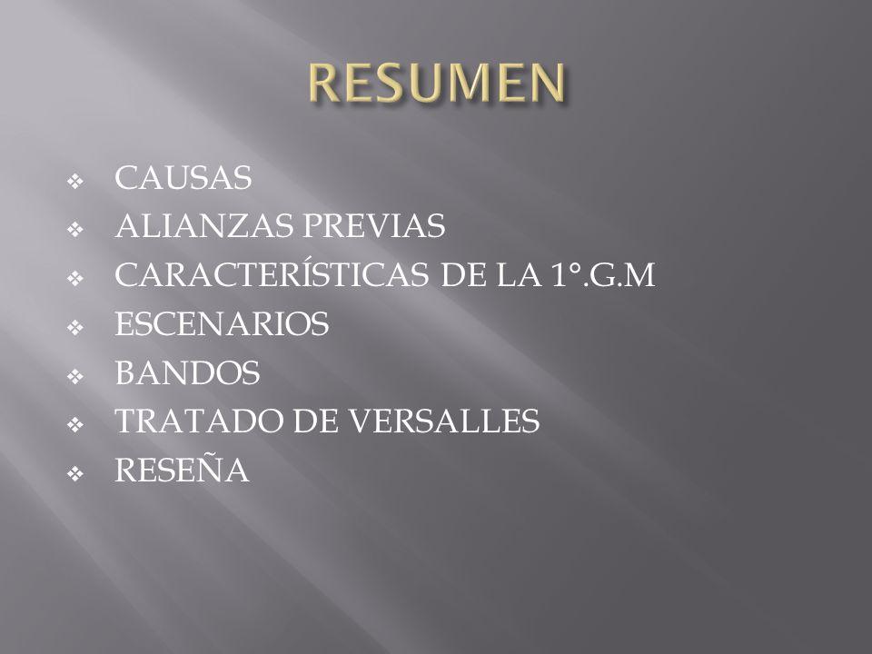 RESUMEN CAUSAS ALIANZAS PREVIAS CARACTERÍSTICAS DE LA 1°.G.M
