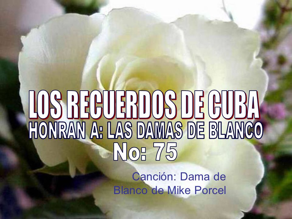HONRAN A: LAS DAMAS DE BLANCO