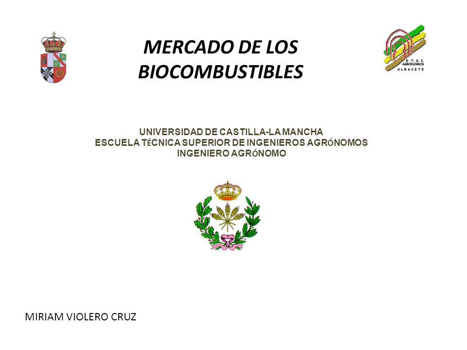 MERCADO DE LOS BIOCOMBUSTIBLES
