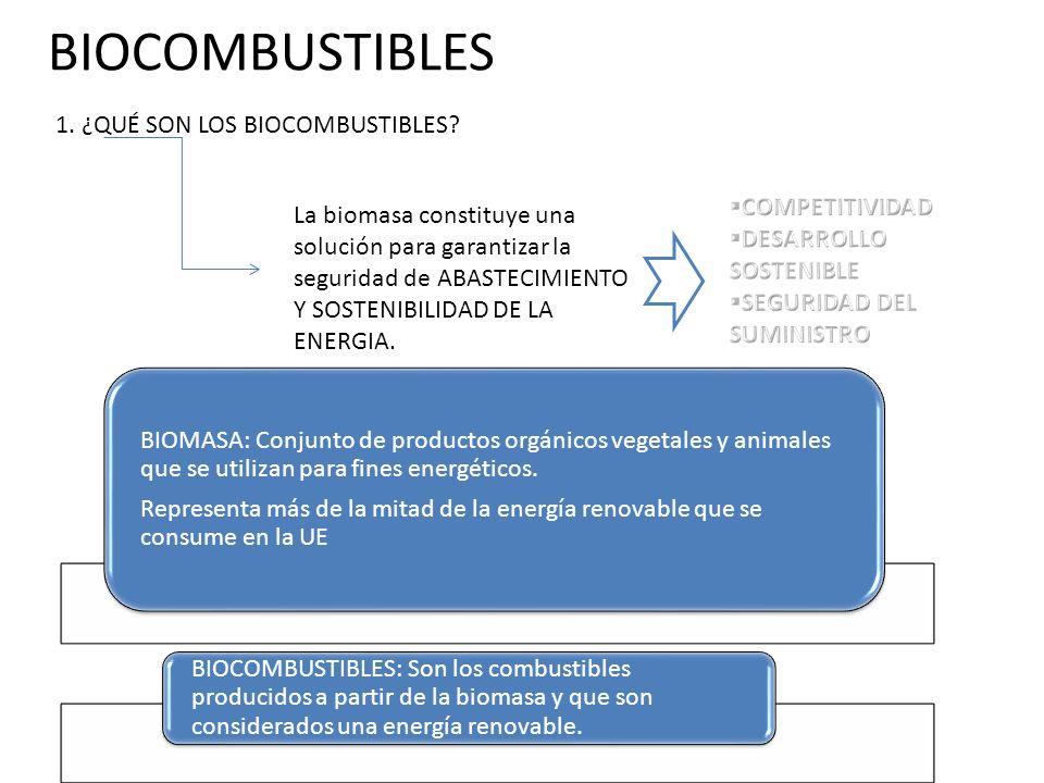 BIOCOMBUSTIBLES 1. ¿QUÉ SON LOS BIOCOMBUSTIBLES COMPETITIVIDAD. DESARROLLO SOSTENIBLE. SEGURIDAD DEL SUMINISTRO.