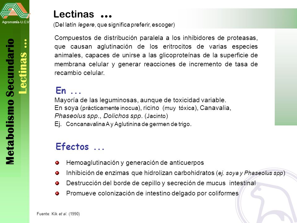 Metabolismo Secundario Lectinas …