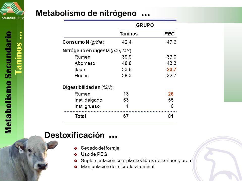 Metabolismo Secundario Taninos …