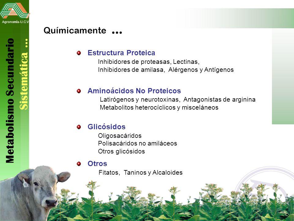 Metabolismo Secundario Sistemática …