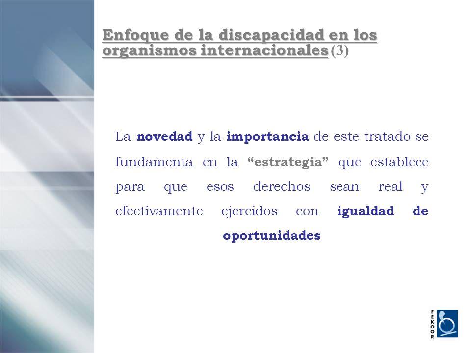 Enfoque de la discapacidad en los organismos internacionales (3)