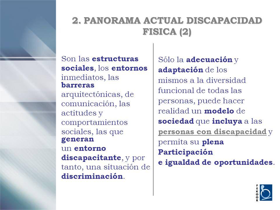 2. PANORAMA ACTUAL DISCAPACIDAD FISICA (2)