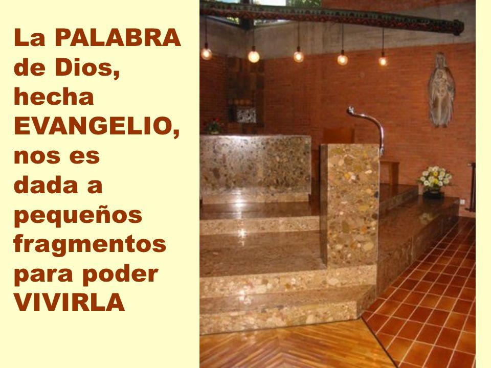 La PALABRA de Dios, hecha EVANGELIO, nos es dada a pequeños fragmentos para poder VIVIRLA