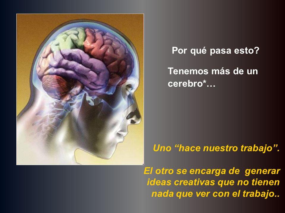 Por qué pasa esto Tenemos más de un cerebro*… Uno hace nuestro trabajo .