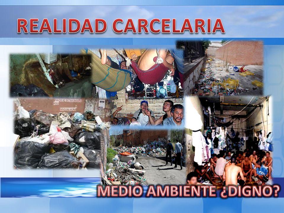 REALIDAD CARCELARIA MEDIO AMBIENTE ¿DIGNO