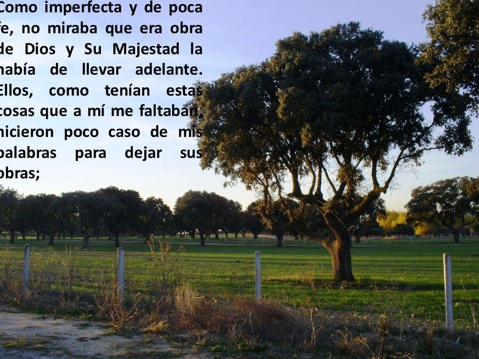 Como imperfecta y de poca fe, no miraba que era obra de Dios y Su Majestad la había de llevar adelante.