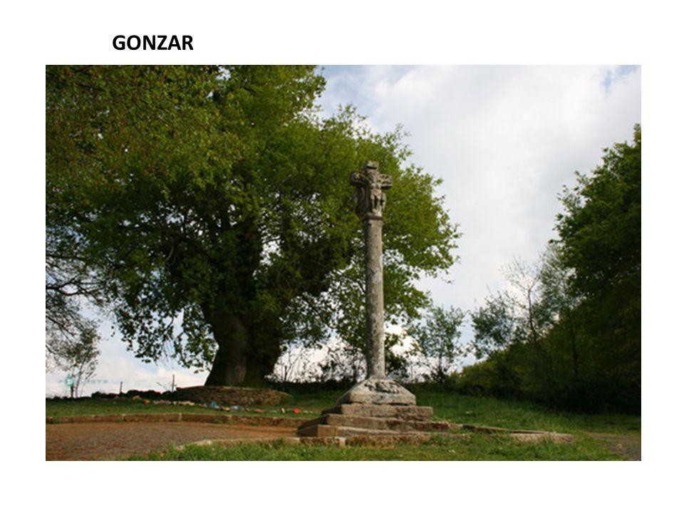 GONZAR