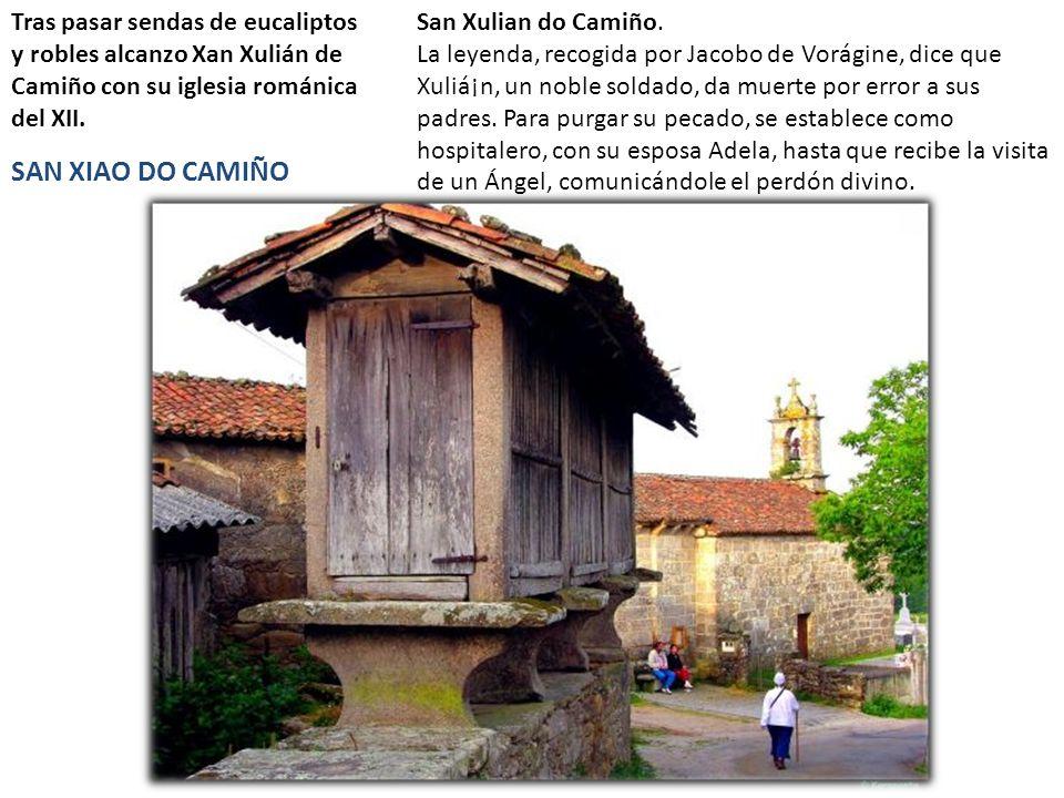 Tras pasar sendas de eucaliptos y robles alcanzo Xan Xulián de Camiño con su iglesia románica del XII.