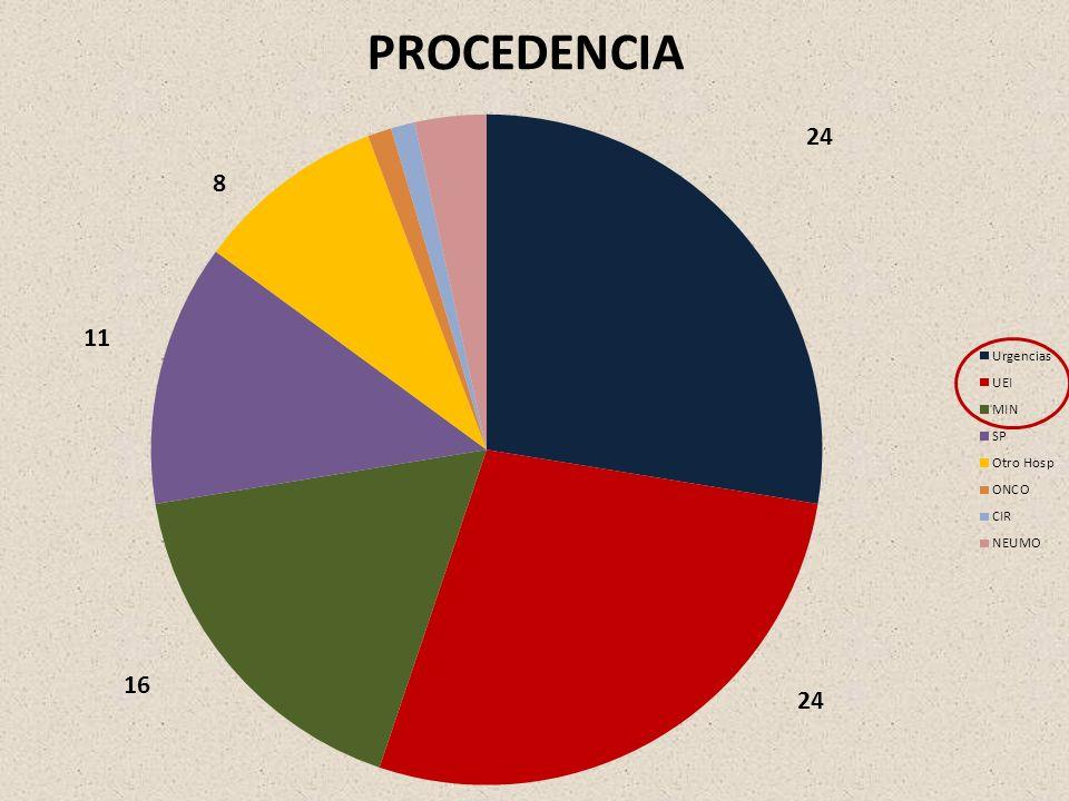 PROCEDENCIA 24