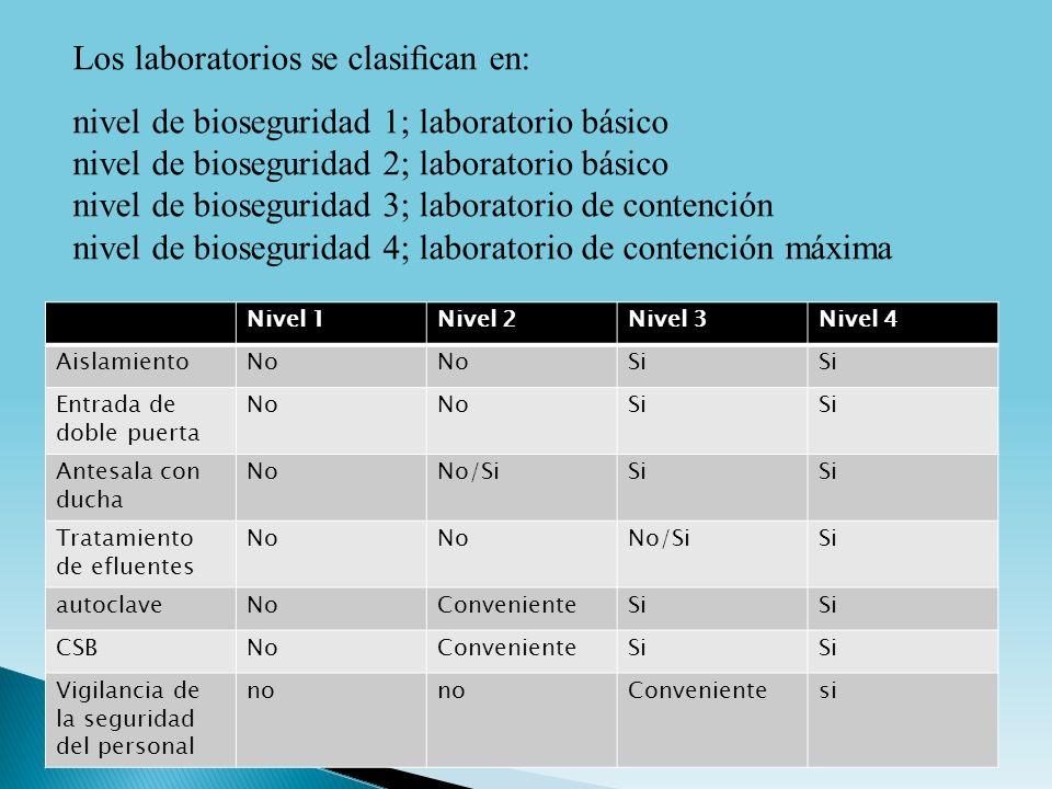Los laboratorios se clasifican en: