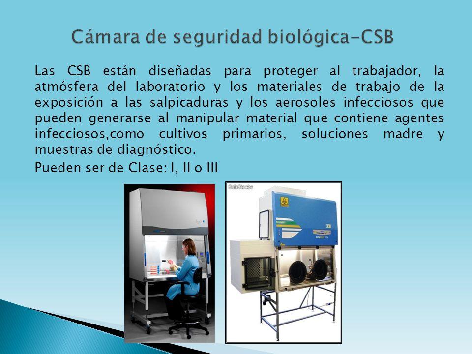Cámara de seguridad biológica-CSB