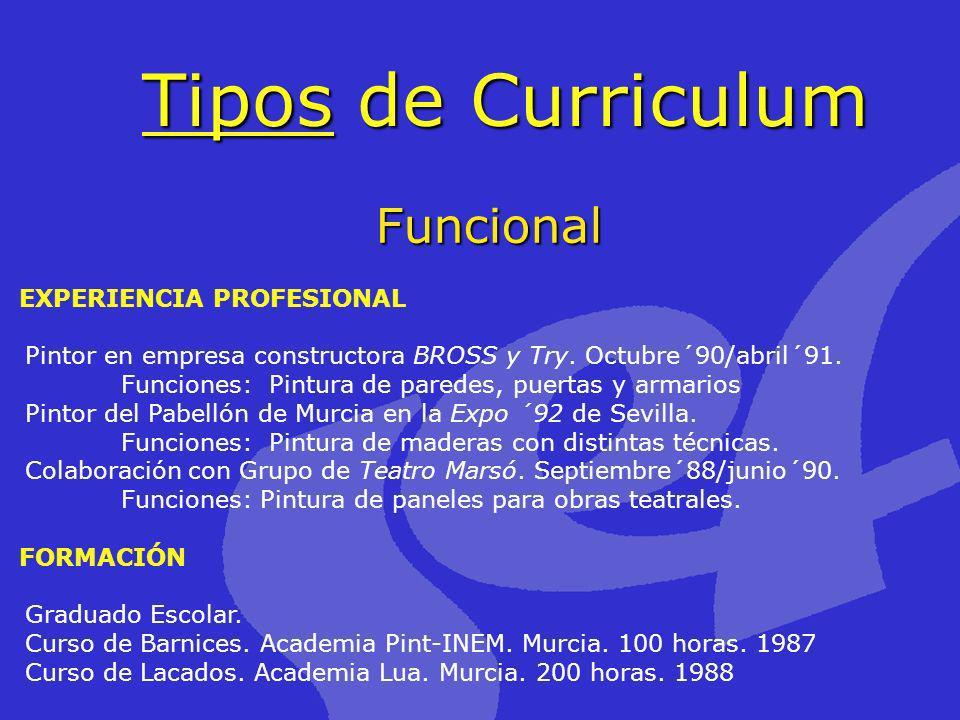 Tipos de Curriculum Funcional EXPERIENCIA PROFESIONAL
