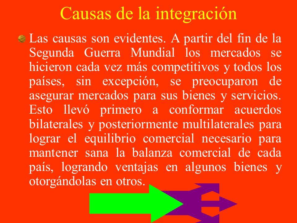 Causas de la integración