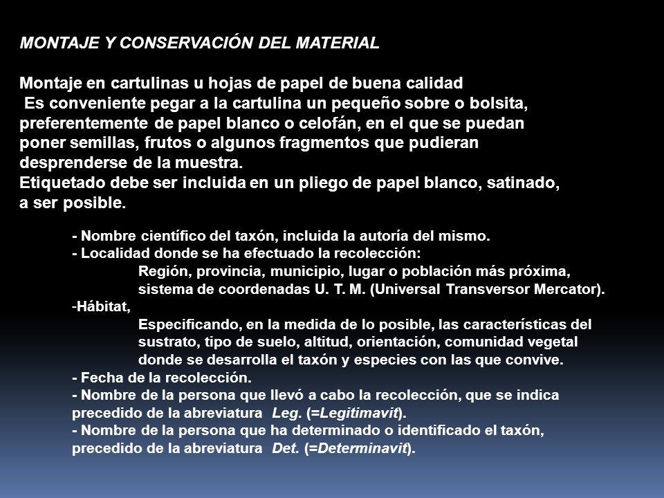MONTAJE Y CONSERVACIÓN DEL MATERIAL