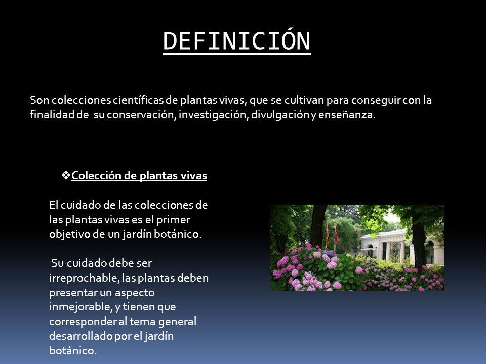 Jardines bot nicos tema 6 el jard n bot nico ppt video for Informacion sobre el jardin botanico