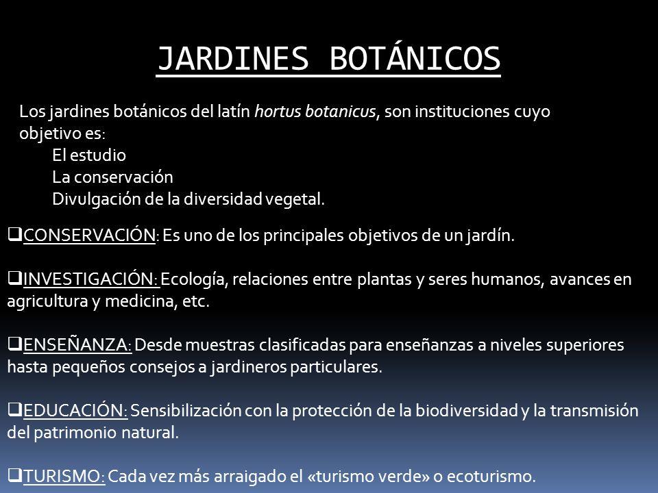 JARDINES BOTÁNICOS Los jardines botánicos del latín hortus botanicus, son instituciones cuyo objetivo es: