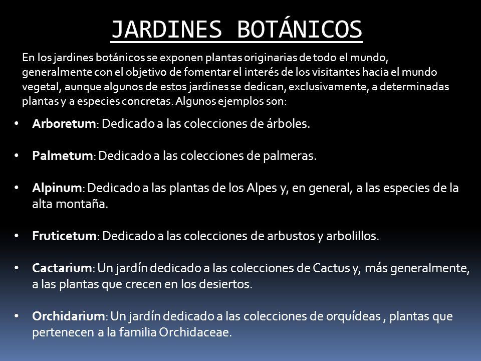 JARDINES BOTÁNICOS Arboretum: Dedicado a las colecciones de árboles.