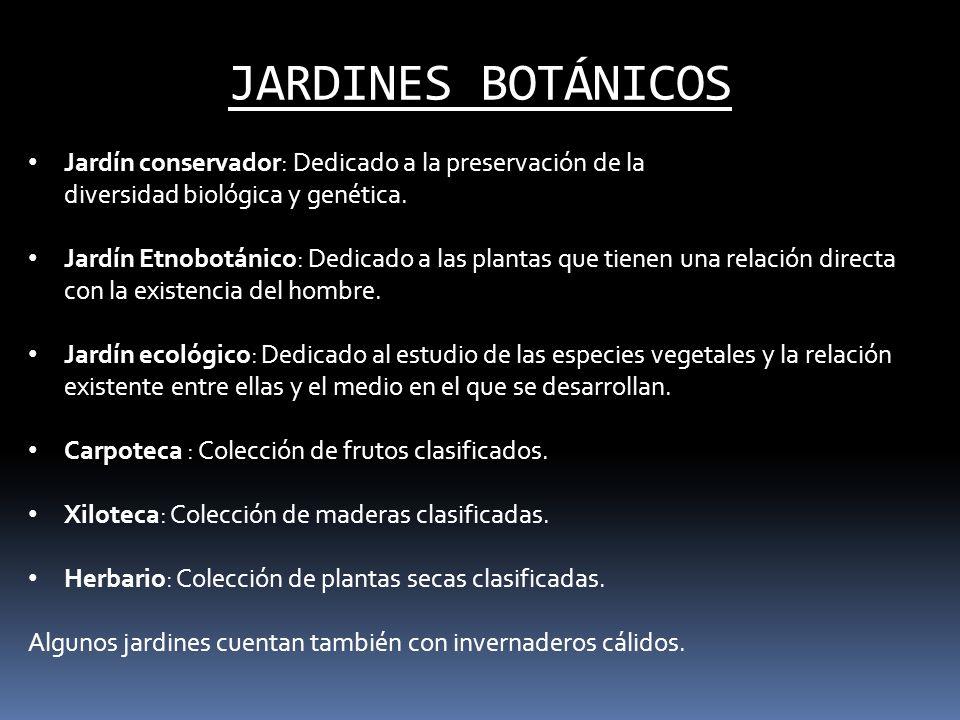 JARDINES BOTÁNICOS Jardín conservador: Dedicado a la preservación de la diversidad biológica y genética.