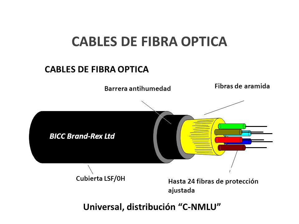 Universal, distribución C-NMLU