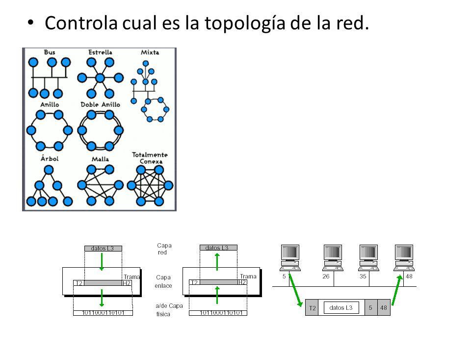 Controla cual es la topología de la red.