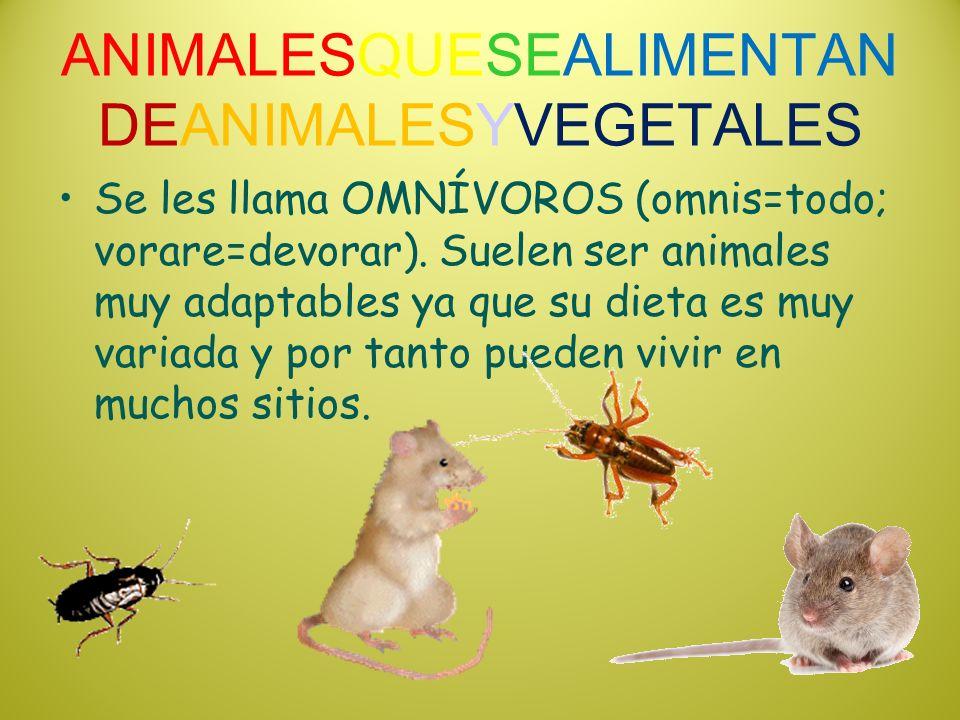 ANIMALESQUESEALIMENTANDEANIMALESYVEGETALES
