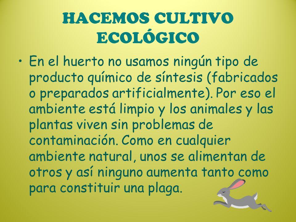 HACEMOS CULTIVO ECOLÓGICO